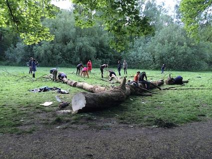 henri-snel tree project 10