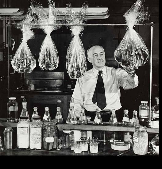 1908- Brandenberger-celofan